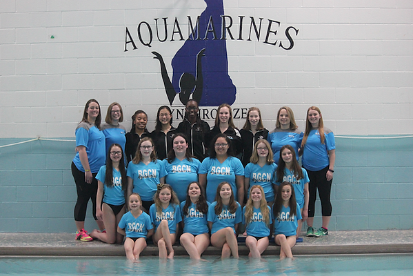Aquamarines team