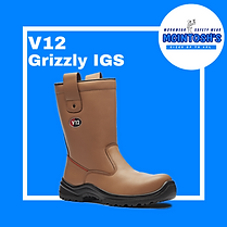 V12 Grizzly (1).png
