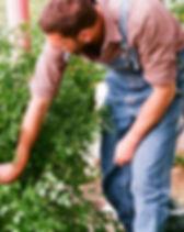 Travailler dans le jardin