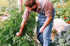 Im Garten arbeiten