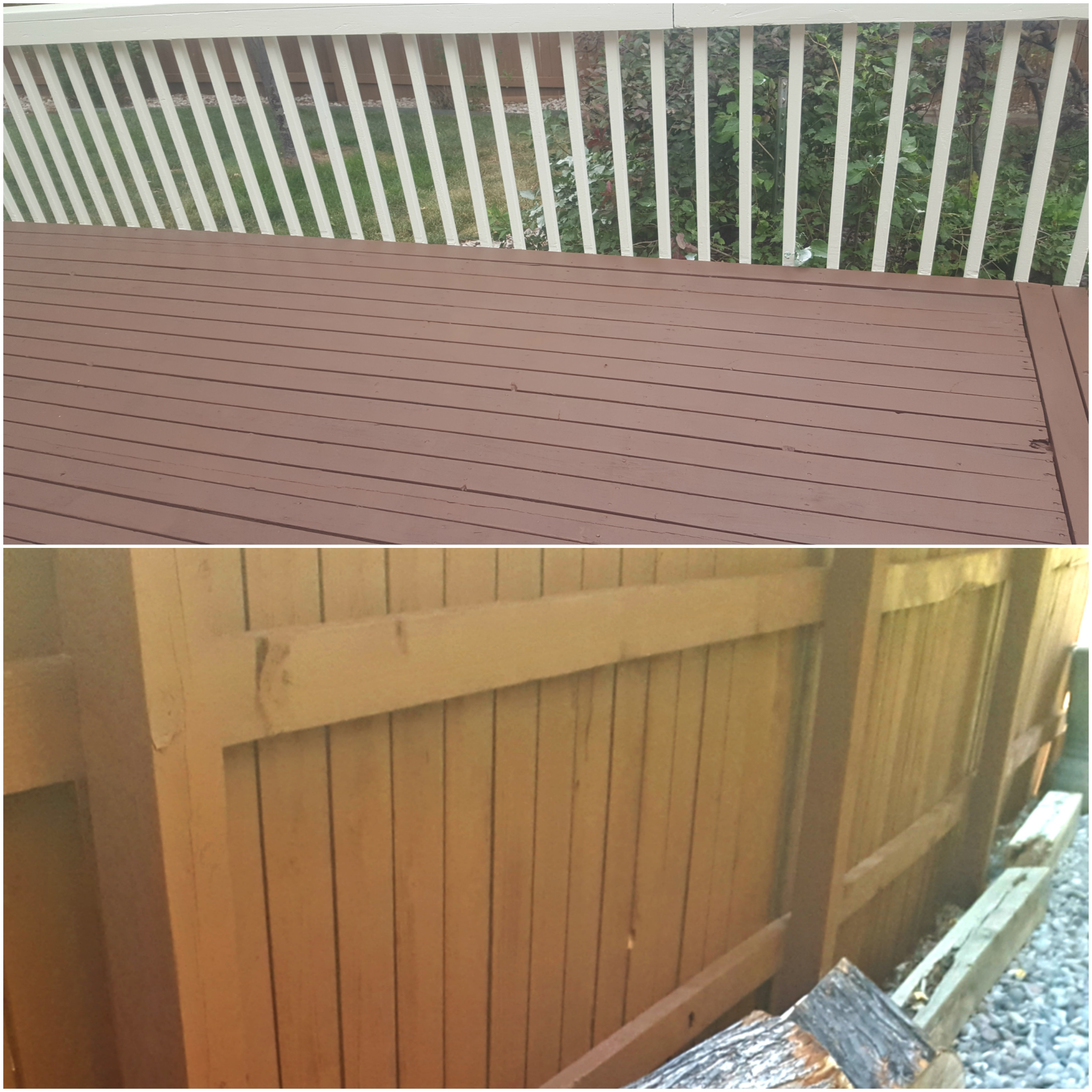 Fence and Deck Staining