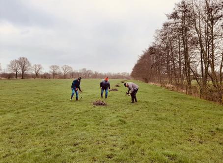 Onderhoud van de weilanden, sloten, boomwallen en singels.