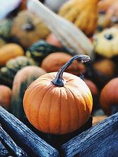 November Fall Image