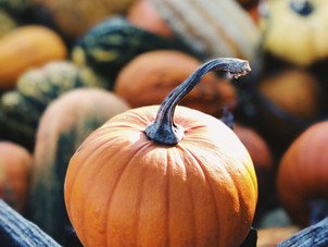 Fall Season - How to choose foods