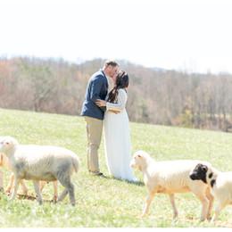 Sweet Spring Backyard Barn Wedding