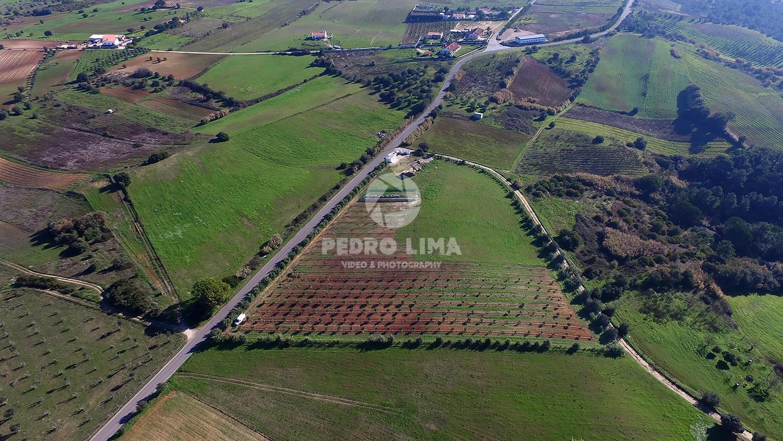 LandForDevelopmentAzambujaPortugal_02
