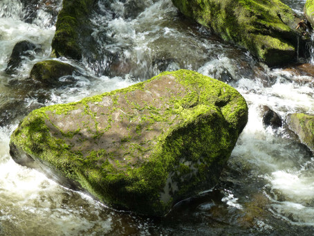 Wales - Water and Stone