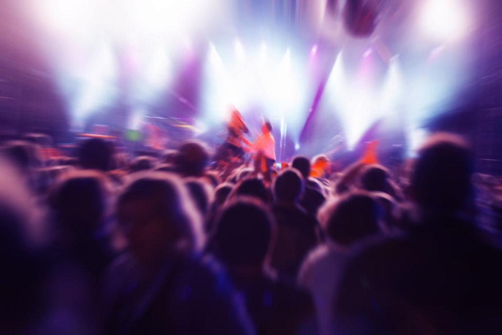 people-in-a-concert.jpg