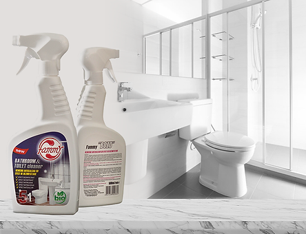 BATHROOM & TOILET CLEANER FAMMY HOME.png