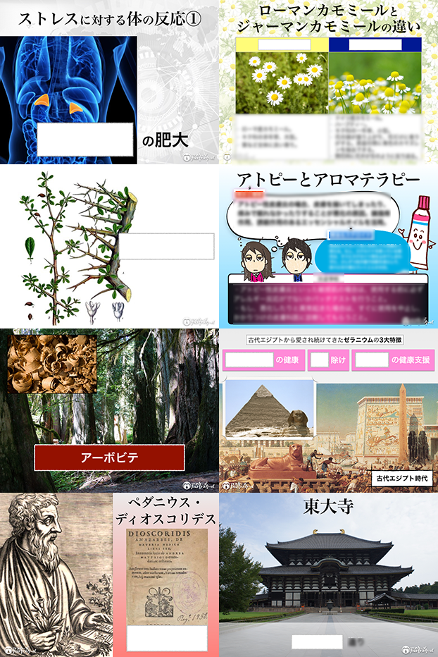 【LP】画像8分割_5