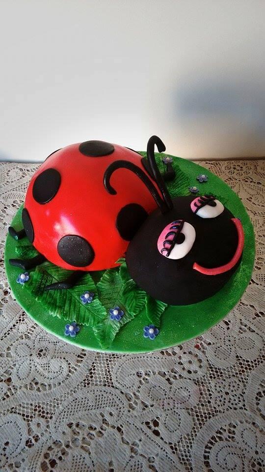Bethanys Ladybug Cake