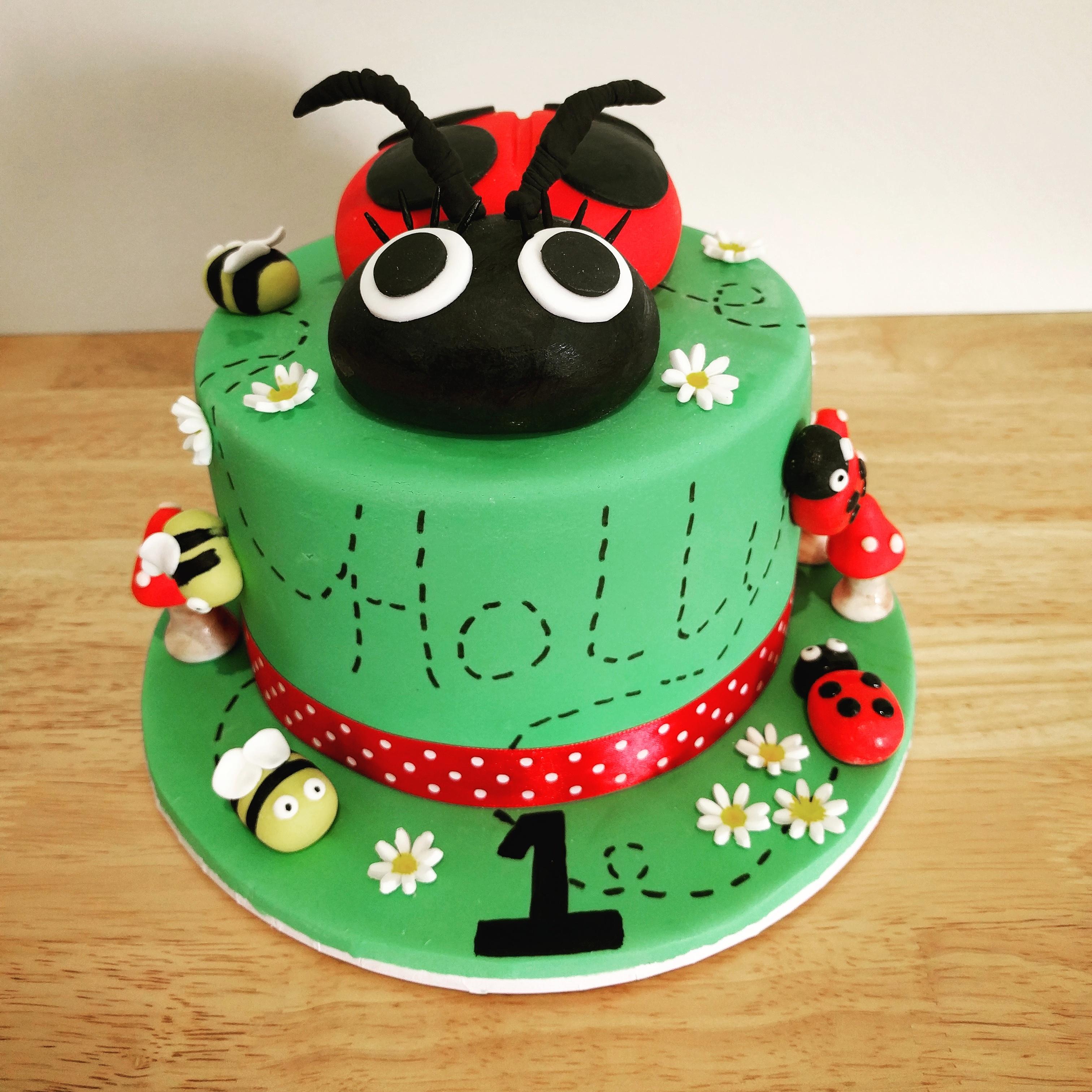 Holy's Ladybug