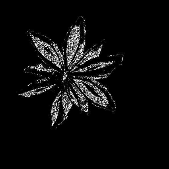 logo_vo3.png