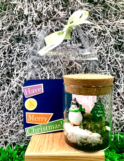 Small Cylinder Terrarium Christmas Gift Set