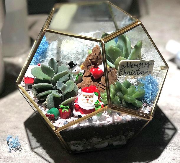 Santa Claus Is Coming To Town Geometric Terrarium