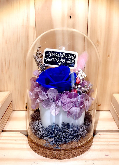 Heartful Wishes in a Pot Preserved Flower