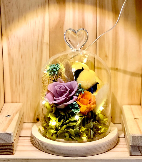 Summer Sunshine Preserved Flower Dome with LED
