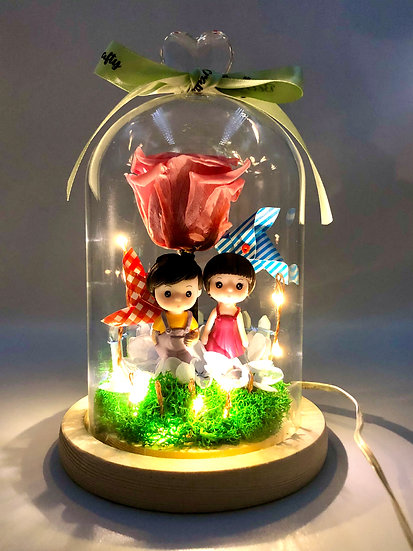 Lovely Wind Preserved Flower Dome with LED