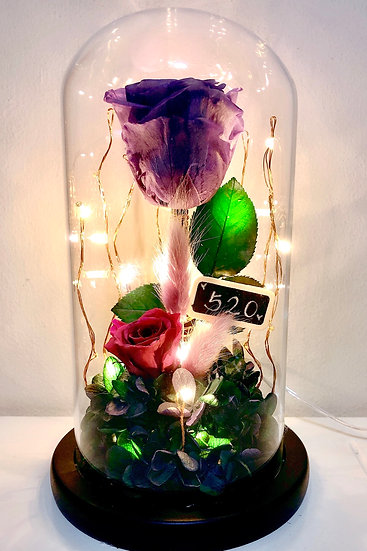 520 I Love You Preserved Flower Dome