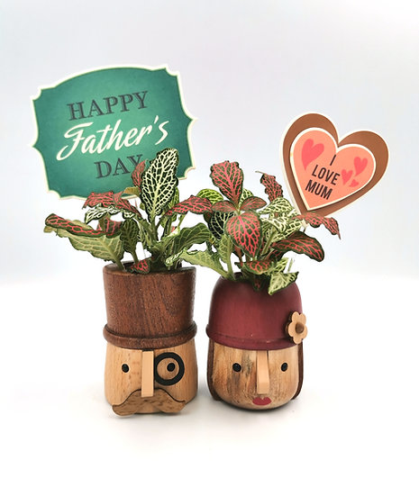 Mom & Dad Fittonia Planter with Magnet