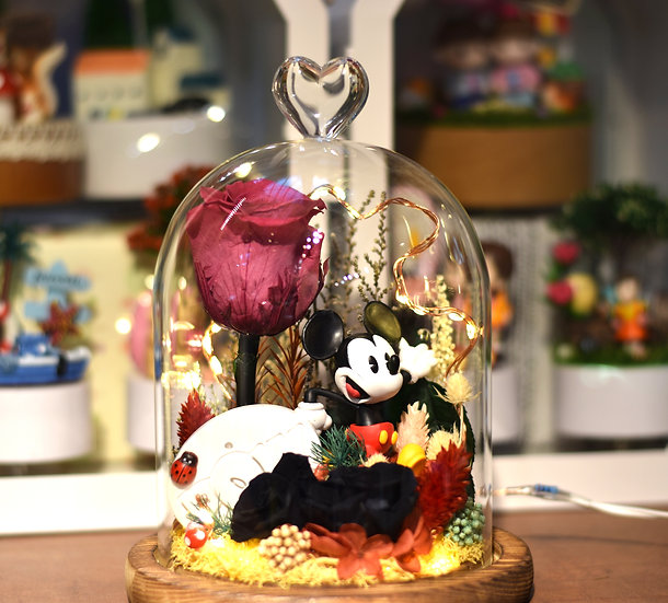Mickey Wishes Preserved Flower Dome with LED