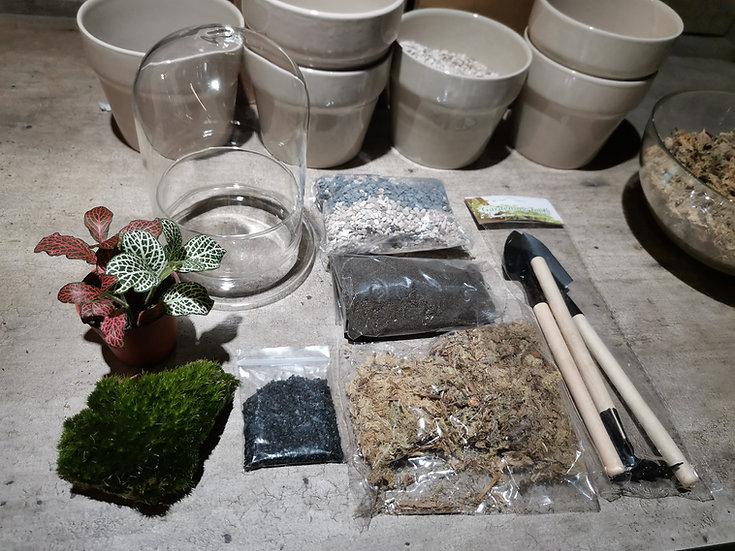 DIY Kit - Cylinder Terrarium