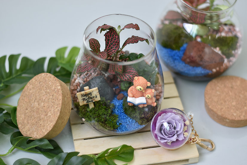 Growing with You Terrarium Set