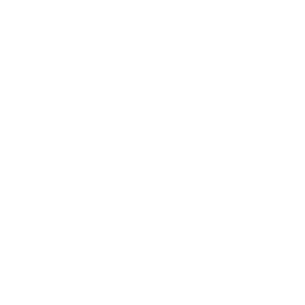 Seed-of-Life.svg White.png