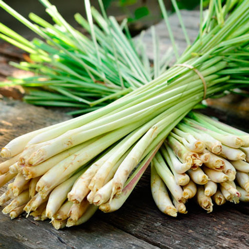 Lemongrass - Sereh/Serai (100g)