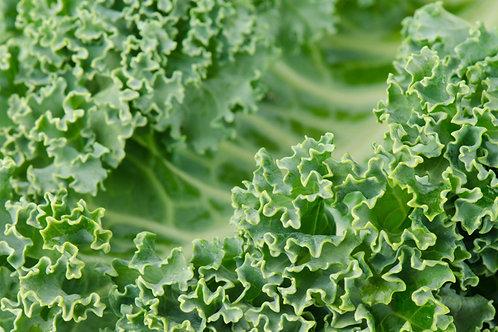 Curly Kale - Kale Kerinting (250g)