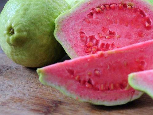 Pink Guava Yoghurt - Yoghurt Jambu Merah ( 500g)