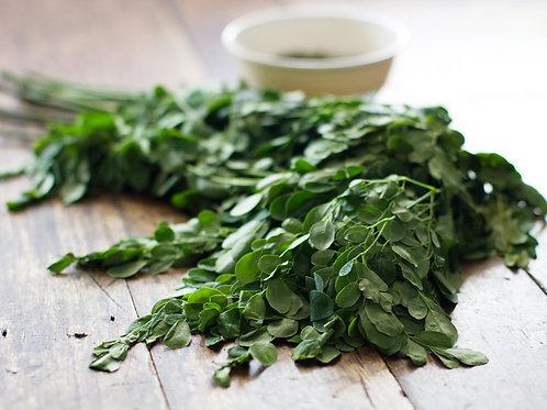 Moringa Fresh leaves - Daun Kelor Segar (500g)