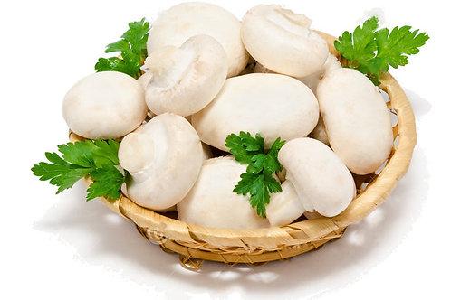 Champignon (Agaricus bisporus) aka white button mushrom - Jamur kancing (200g)