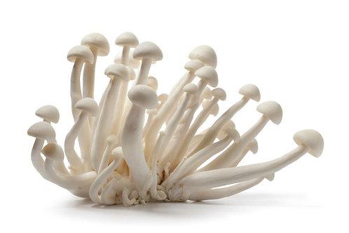 Fresh White Beech Mushroom (White Shimeji Mushroom) - Jamur Shimeji Putih (100g)