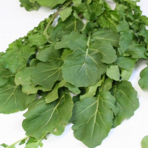 Rucola (Erúca vescicaria satíva) or Rocket salad (250g)