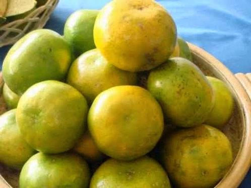 Orange - Jeruk Lumajang (500g)