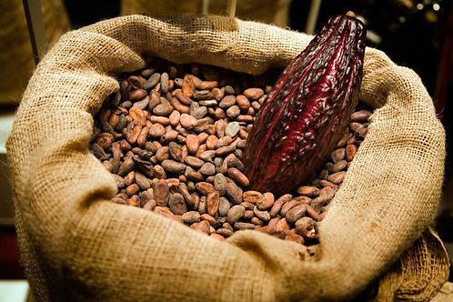 Raw Cocoa Beans - Biji Coklat (250g)