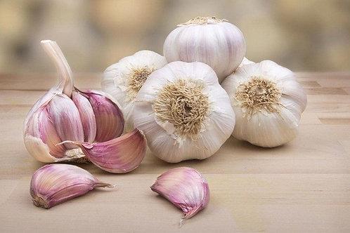 Garlic (Allium sativum) - Bawang Putih (250g)