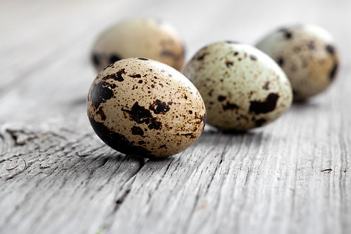 Quail Eggs - Telor Burung Puyuh (6pcs)