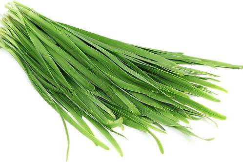 Garlic Chives - Kucai (250g)