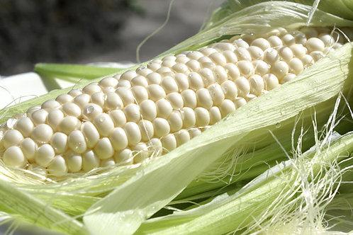 White Glutinous Corn - Jagung Ketan Putih (1kg)