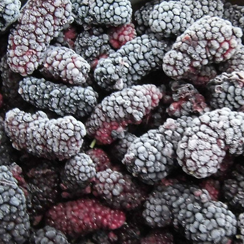 Frozen Mulberries - Murbei Beku (500g)