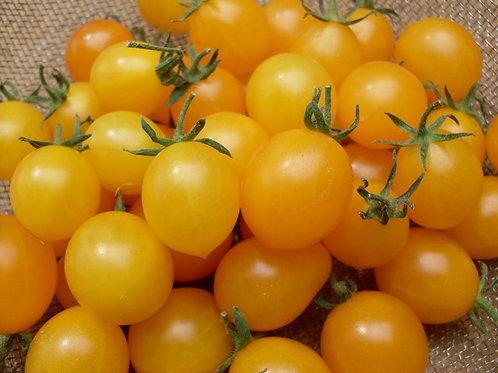 Yellow Cherry Tomato - Tomat Cheri Kuning (250g)