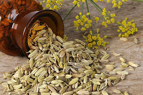 Fennel Seeds (Foenictilum vulgare) - Adas Biji (100g)