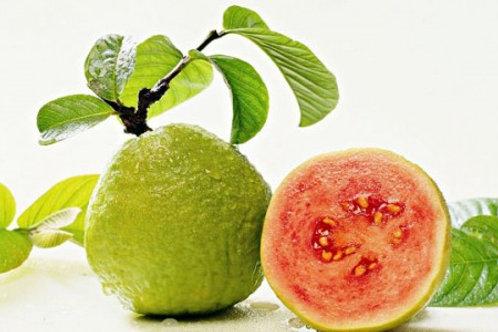 Red Guava - Jambu Merah (250g)