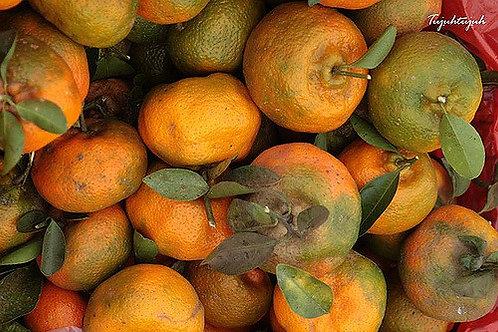Orange Kintamani - Jeruk Kintamani (500g)