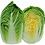 Thumbnail: Chinese Cabbage - Sawi Putih (250g)