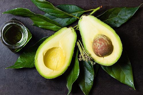Avocado Vinegar (fruit, seed & leaves) - Cuka Alpukat (250ml)