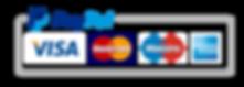 paypal-1 logo.png