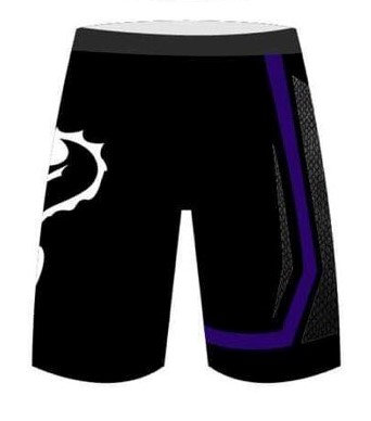Fight Shorts - Competitor Purple